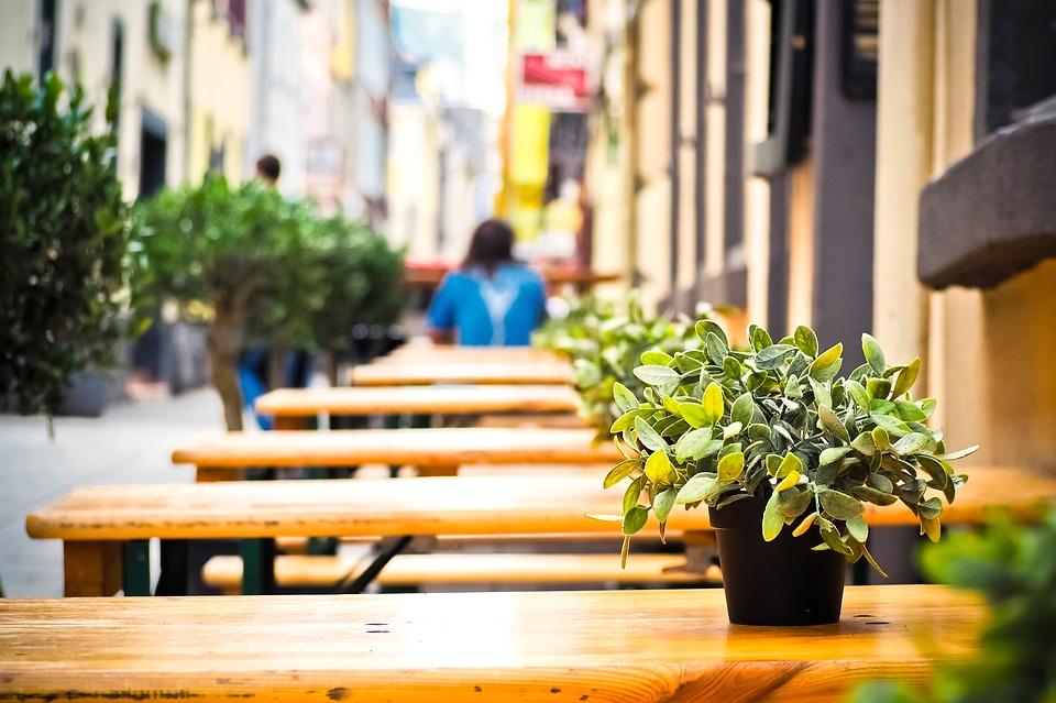 terraza-bar-plantas-mesa
